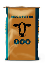 Mega fat 88 pack product listing